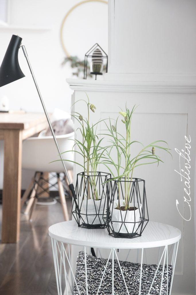 Windlichter mit Schachbrett-Blume